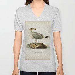 European herring gull (Larus argentatus) illustrated by the von Wright brothers Unisex V-Neck