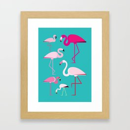 Flamingos Framed Art Print