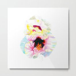 Aloalo / White Hibiscus Metal Print