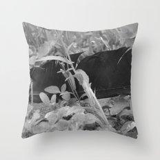 Black plume Throw Pillow