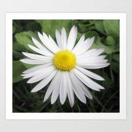White composite flower Art Print