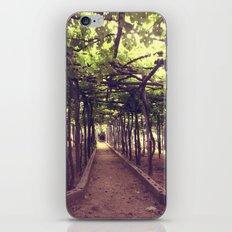 Lemon Grove in Ravello, Italy iPhone & iPod Skin
