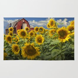Golden Blooming Sunflowers with Red Barn Rug