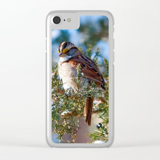 Sunlight Sparrow Clear iPhone Case