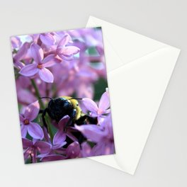 Busy Bee in Lilac Art Photography Stationery Cards