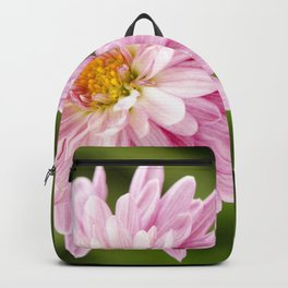 Padre Cerise Belgian Mum Bud and Bloom Backpack