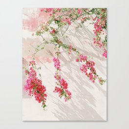 Sunkissed pink flowers on textured wall Canvas Print