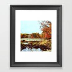 Beaver Pond Framed Art Print
