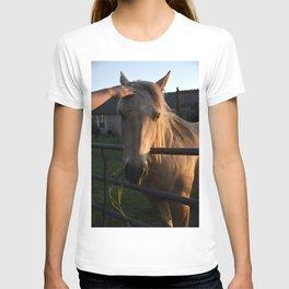 She's a Beauty... T-shirt