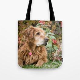 Comanche Autumn Tote Bag
