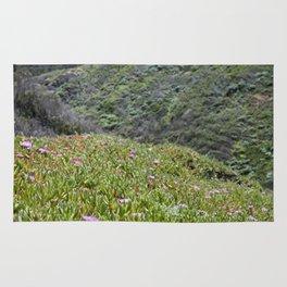 Montaña de Oro Hillside Rug