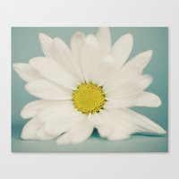 daisy Canvas Prints featuring DAISY  by Laura Ruth