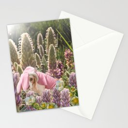 Hoppy Spring Stationery Cards