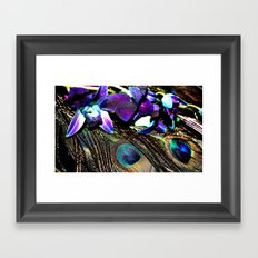 Peacock Perfection Framed Art Print