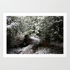 Snowy Path in The Trees Art Print