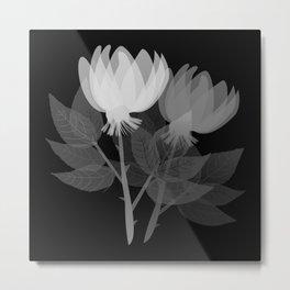 illustrations floral plants Metal Print