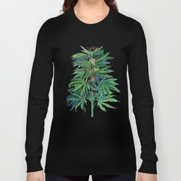 Cannabis Scientific Illustration Long Sleeve T-shirt