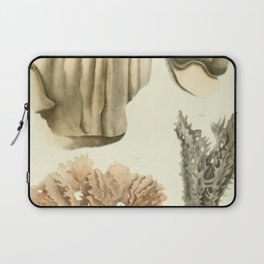 Naturalist Coral Laptop Sleeve
