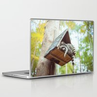 racoon Laptop & iPad Skins featuring racoon by Kalbsroulade