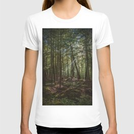 Rays of Sun in the Forest T-shirt