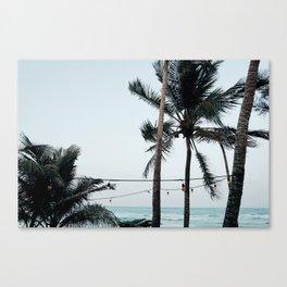 Palm Tree Silhouettes Canvas Print
