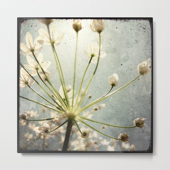 Botanical Explosion Metal Print