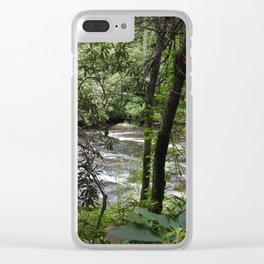 Abrams Creek Clear iPhone Case