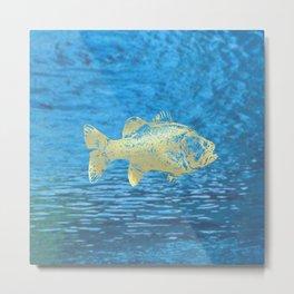 glitterfish OMM Metal Print