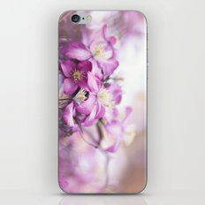 purple clematis iPhone & iPod Skin