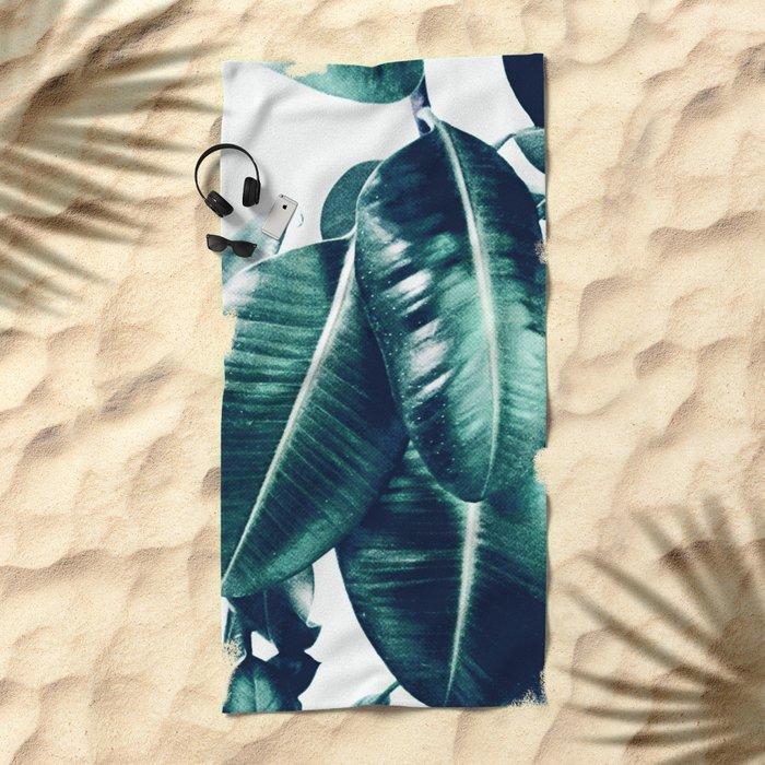 Ficus Elastica #1 Beach Towel