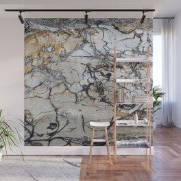 Natural Distressed Beach Drift Wood Textures Wall Mural