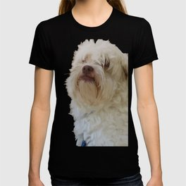 Grumpy Terrier Dog Face T-shirt