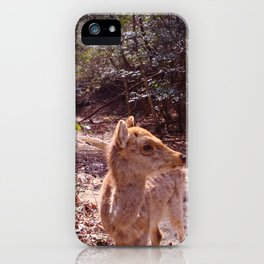 Deer on the Mountain iPhone Case