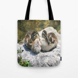 Mallard Ducklings Tote Bag
