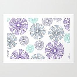 white sea urchin Art Print