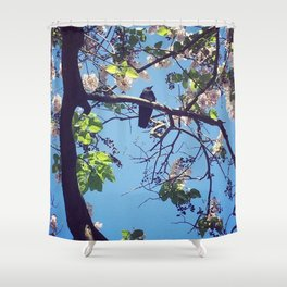 Crow in Cherry Blossoms Shower Curtain