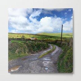 Irish countryside after the rain Metal Print