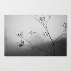 in autumn Canvas Print