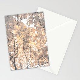 caprice Stationery Cards