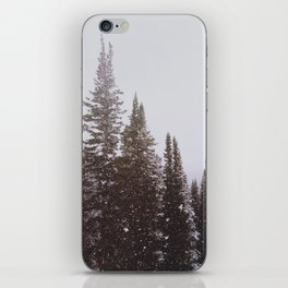 Misty Pines iPhone Skin