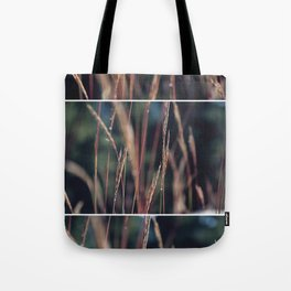 Lookout Mountain  Tote Bag