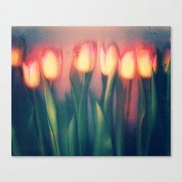 Tulips Yellow Canvas Print