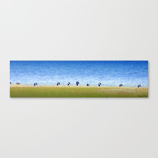 Goose Line Canvas Print