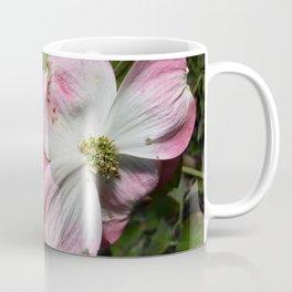Dogwood  flowers Coffee Mug