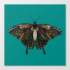 swallowtail butterfly teal Canvas Print