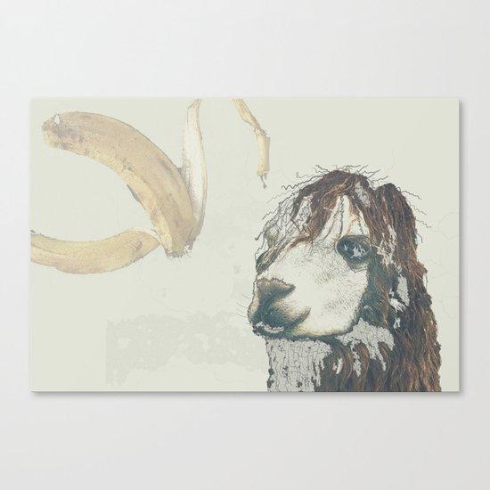 Lama banana Canvas Print