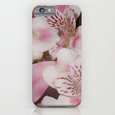 3  iPhone 6s Slim Case