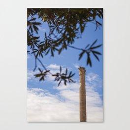 Caecilia Trebulla Canvas Print