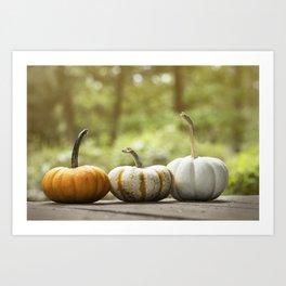 Fall pumpkins, harvest decor Art Print