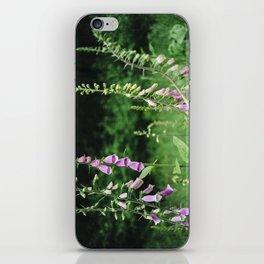 Wild foxgloves (Digitalis purpurea). Norfolk, UK. iPhone Skin